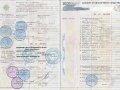 паспорт на транспорт – ПТС